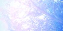 [BK-K_003]myrtle_sub